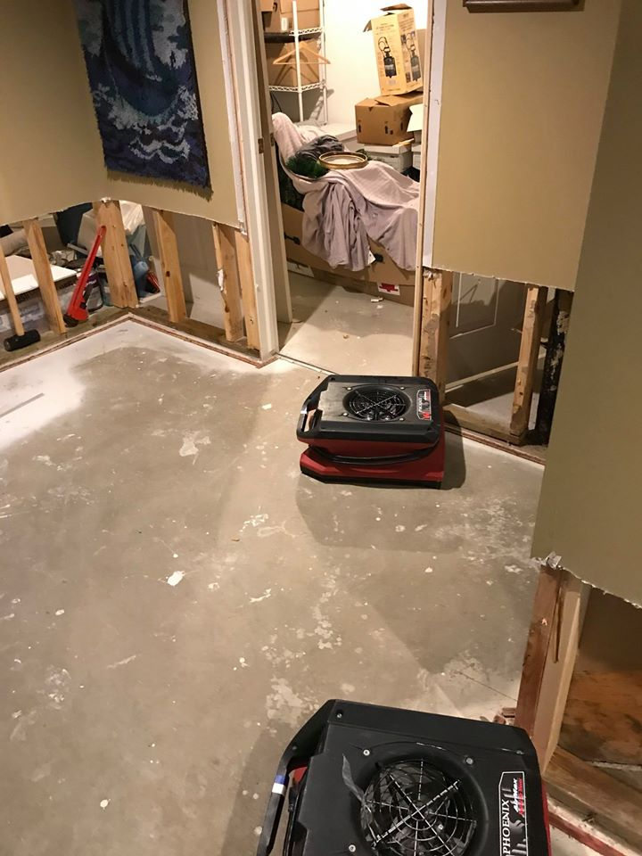construction after mold inspection and removal